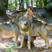 Wolfspark Werner Freud