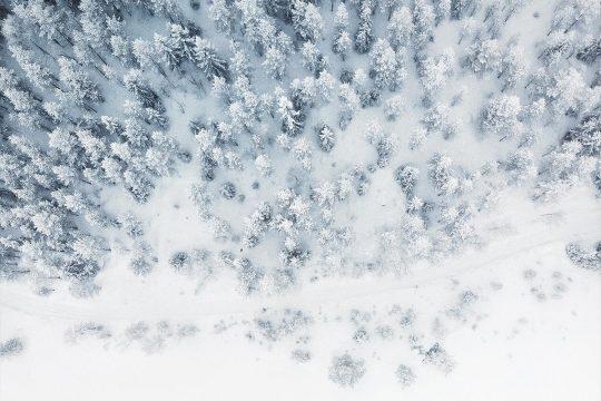 Saisonale Menus Winter